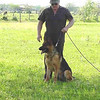Fred training with Nikki
