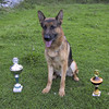 Nikki posing with his trophies.