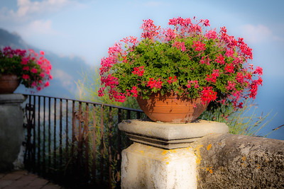 Flower vase at Terrazza dell'Infinito, Ravello, Italy