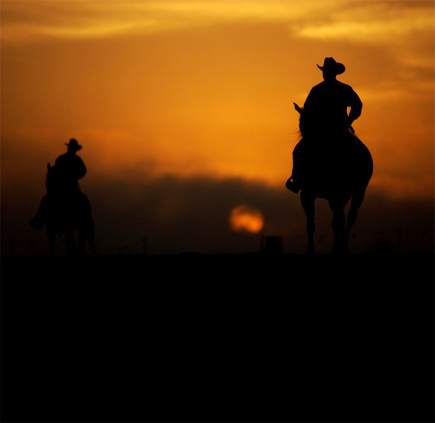 Cowboy Sunset 800 SQ