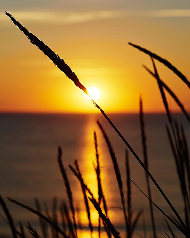 Sylt, Evening Sun