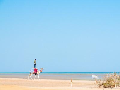 Am Roten Meer
