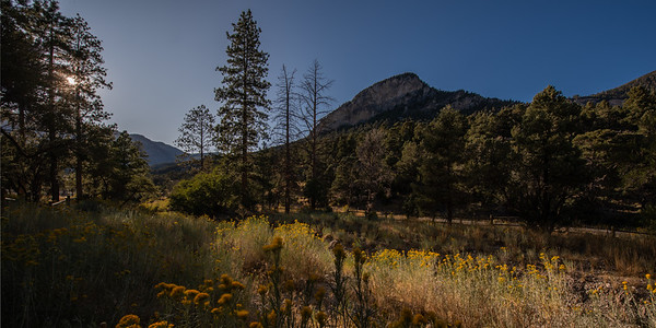 Near Mount Charleston
