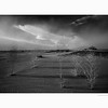 Keeler Dunes