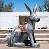Giant Rabbit, Joseph City, AZ