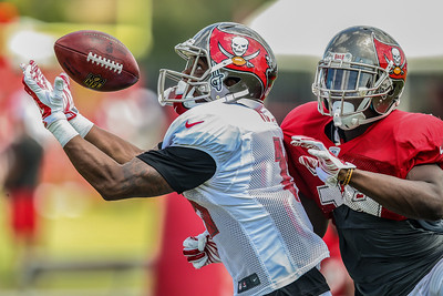 Buccaneers Traing Camp