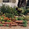 Succulent & flagstone border