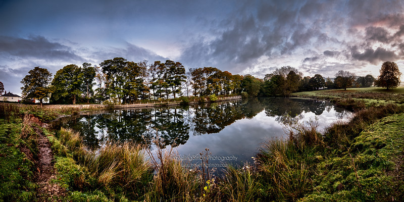 Swan's Pool, Macclesfield