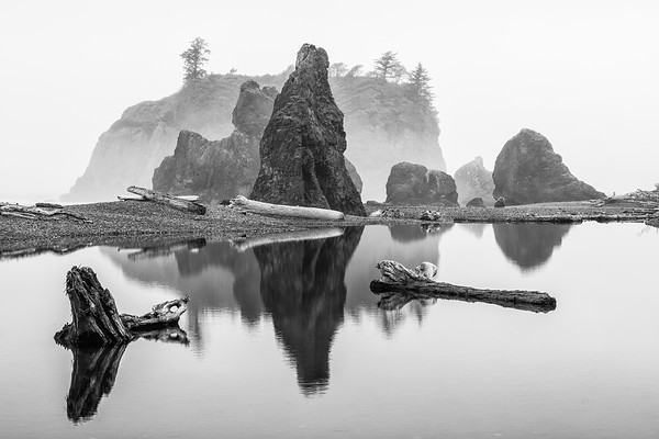 Reflection of rocks and logs in water at Ruby Beach in Olympic National Park Washington