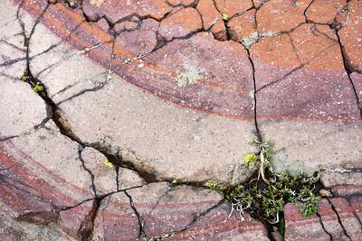 Cracks and colors in volcanic rock, Goat Rocks Wilderness, Washington