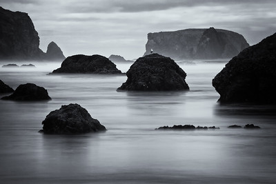 Black and white image of lone seagull on rocks at Bandon Beach Oregon