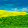 TriColor-Palouse_Jun112013_1692