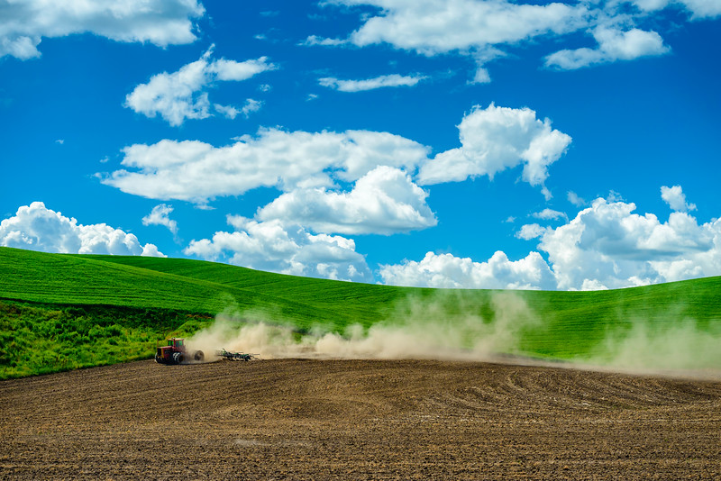 Tractor_Tilling-Outside_Colfax_061313_0195