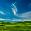 Green Palouse-Blue Sky_Jun112013_2847