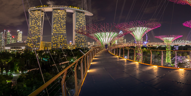 Skywalk, Gardens by the Bay, Singapore