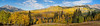 Panorama of autumn color with Aspen trees on the road over Keebler Pass near Crested Butte, Colorado.