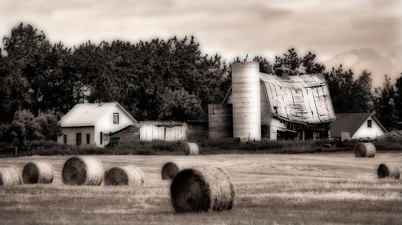 Alaska Farmland*