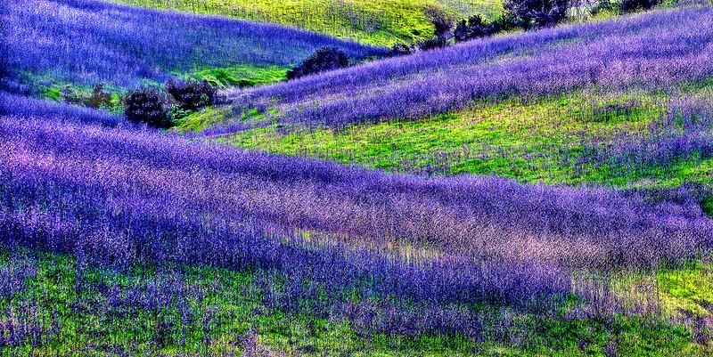 April    Southern California