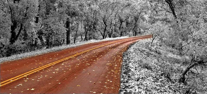A Winter's Tale                 Zion, Utah