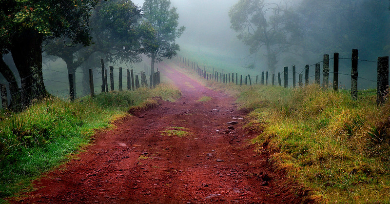Ethereal Journey      Costa Rica backroads