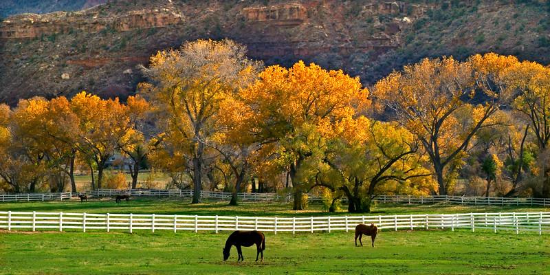 Green Pastures      near Zion, Utah
