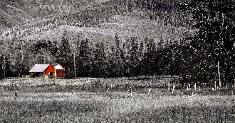 The Barn            Hope, Alaska