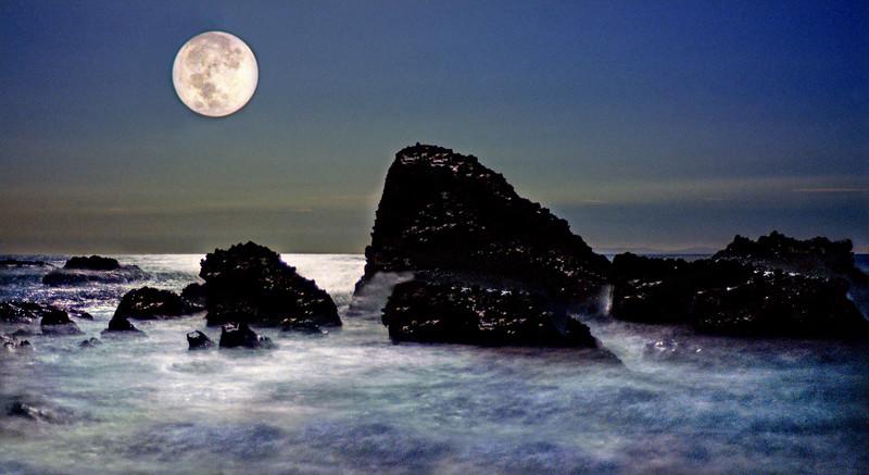 Enchanted Night     Laguna Beach, California