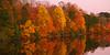 Nockamixon Fall Reflections, PA