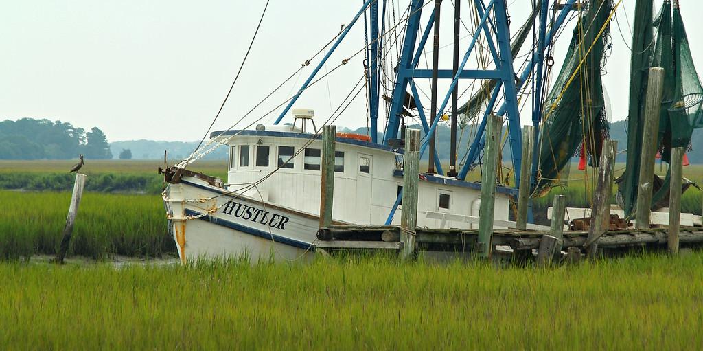 Shrimp boat with pelican, South Carolina
