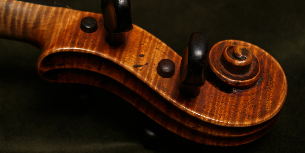 Violin Scroll on Dark Green Velvet