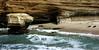 Seals on the beach near Seal Rock; Casa Beach, La Jolla CA