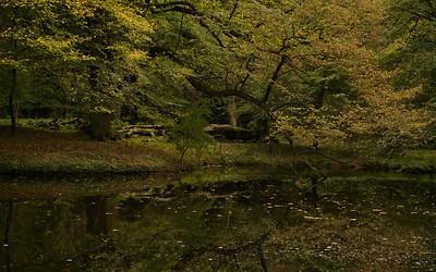 Hidden reflection