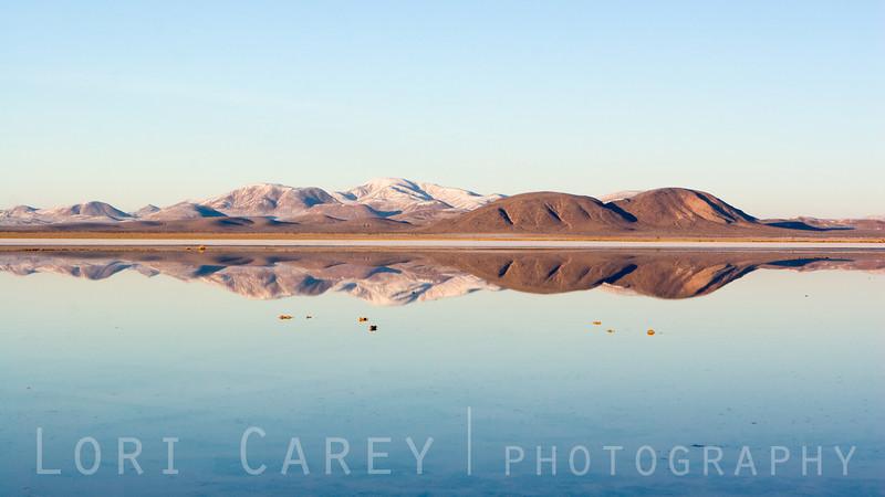 Mojave Rorschach #3