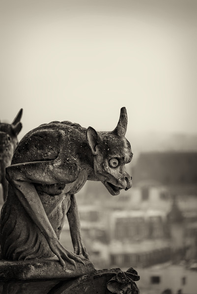 Paris' Watchful Eyes (Notre Dame Cathedral)