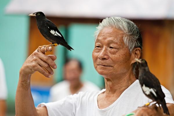 4) Two Birds 1