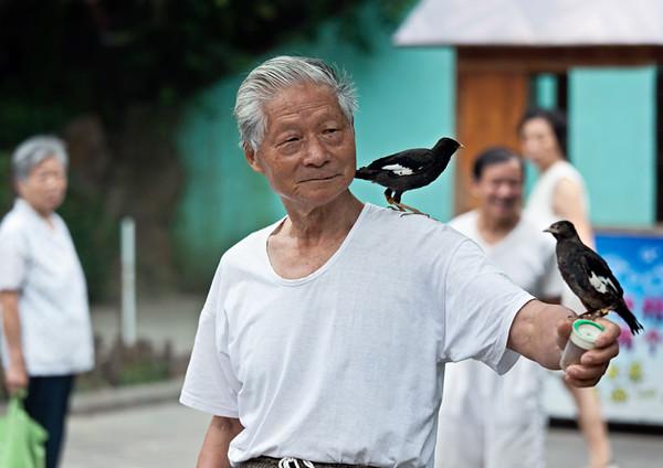 5) Two Birds 2