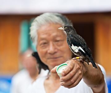 3) Bird on Hand