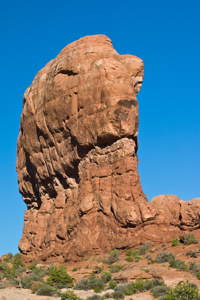 Garden of the Gods formations in Arches National Park in Utah.