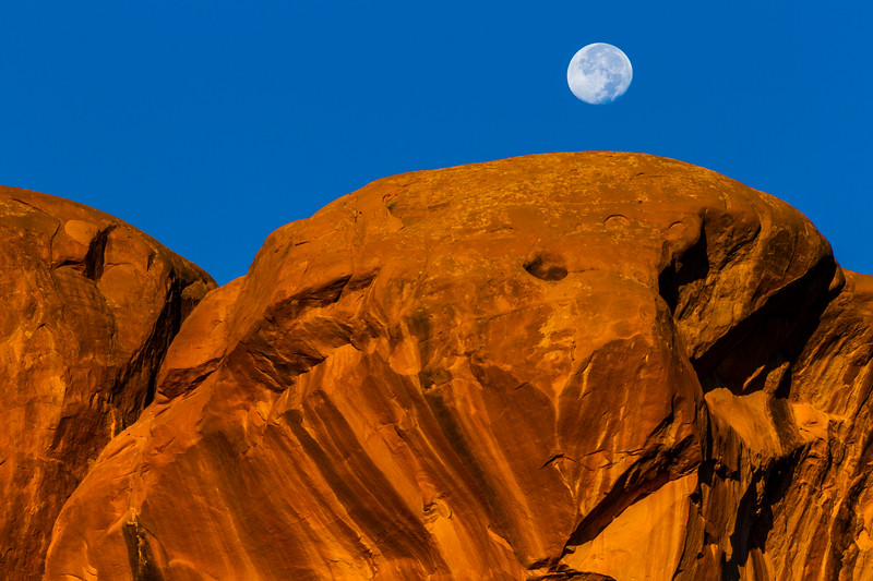 Moon setting over Parade of Elephants rock formation at sunrise in Arches National Park in Utah.