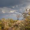 Light after storm in Big Bend National Park.