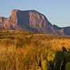 Chisos Mountains seen from Green Gulch at Sunrise, in Big Bend National Park, as cactus and native grasses shine in early light.