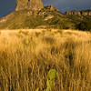 """Sunset light on grasslands and mountains in Chisos Basin, at """"The Window"""" area in Big Bend National Park"""