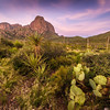 Glow from sunrise lights up the Chisos Mountains in Big Bend National Park.