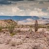 Storm clouds developing over desert in Big Bend National Park.