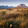 Chisos Mountains in Big Bend National Park, taken at Green Gulch just after sunrise, showing effect of light on grasslands