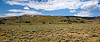 Panorama of sagebrush meadow in the northwest corner of Yellowstone National Park in Wyoming.
