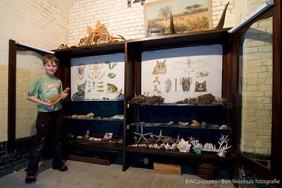 De kunst van het verzamelen 2009 (10)