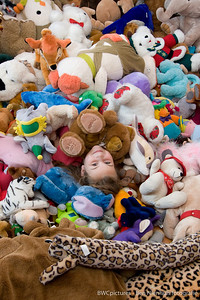De kunst van het verzamelen 2009 (14)