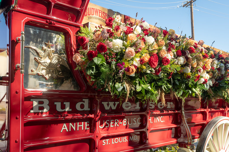 The Budweiser wagon after the Rose Parade