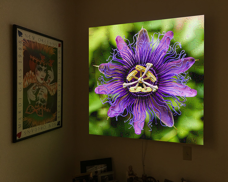 Passion Flower Dream (Light Box)